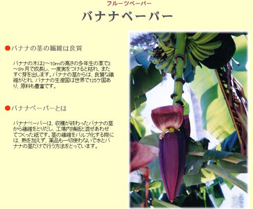 bananapaper 2.jpg